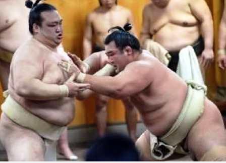 20160430 稀勢の里 大相撲 _ 日刊スポーツ-6