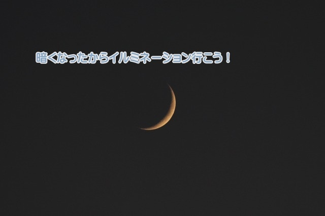 2P3A7529.jpg
