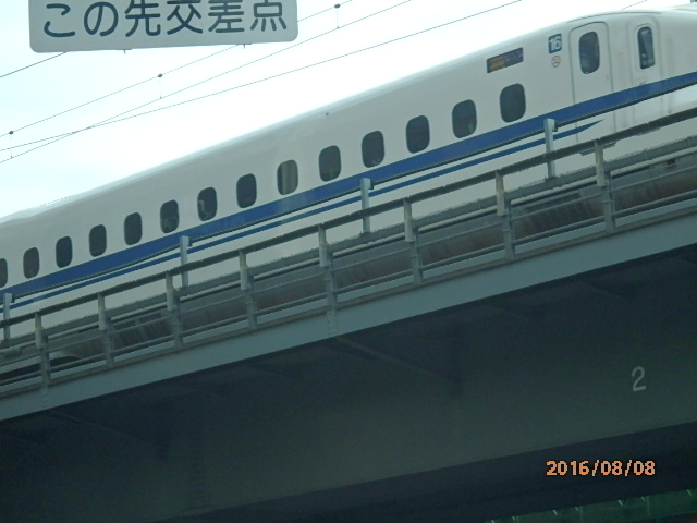 P8080110.jpg