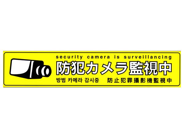 s-yoko-y.jpg