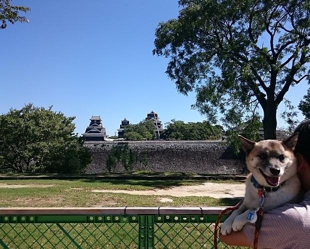 7熊本城と僕