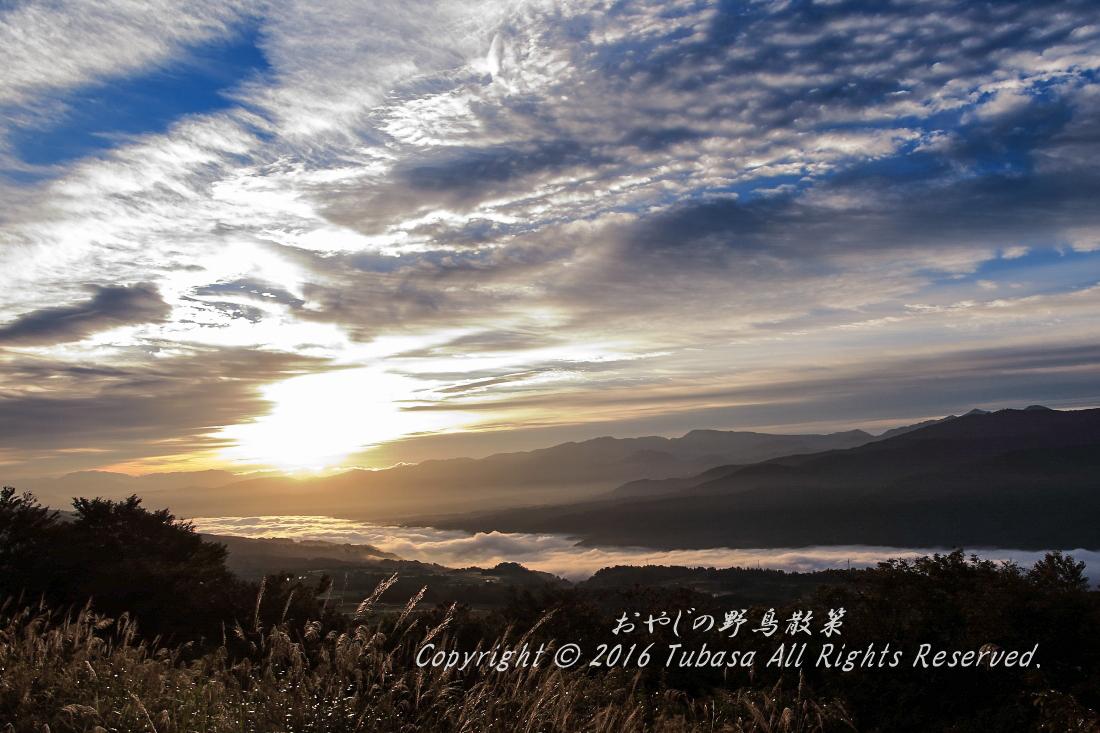 20161015-IMG_0051.jpg