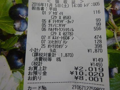 mini_DSC01533_2016110514400278e.jpg