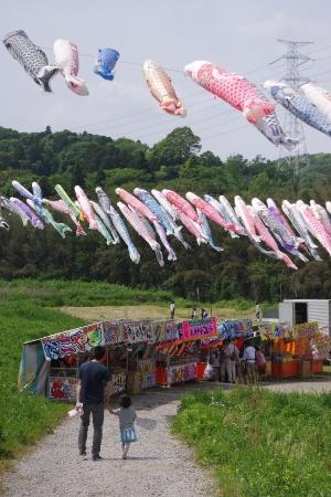 山中区大空に鯉のぼりを掲げる会