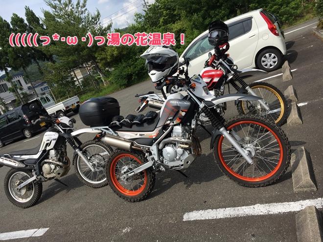 写真 2016-06-11 14 44 52