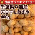 tempiboshiirizaya400[1]
