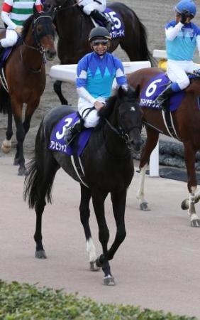 【競馬】ステファノスとかアンビシャスって無冠のくせになんで頑なにマイルG1は使わないの?