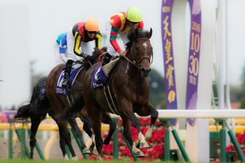 【競馬】なぜモーリスは安田記念敗れたのか?ロゴタイプと力違いすぎる