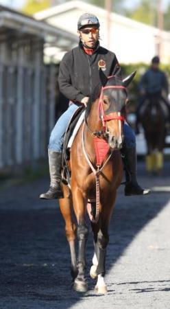 【競馬】ジェンティルドンナの全妹ベルダム 石坂師「駄馬です」