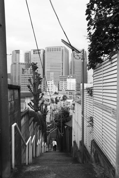 お散歩フォト 10/13