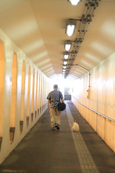 軽井沢旅行 前半 2016
