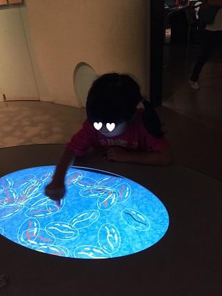 国立科学博物館細胞膜