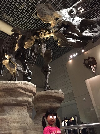 国立科学博物館トリケラトプス