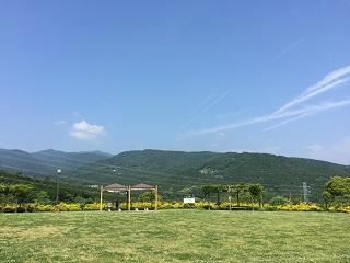 小田原わんぱくらんど見晴らしの丘