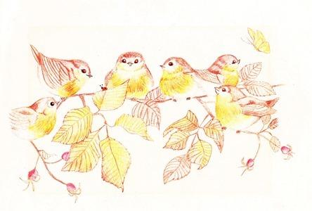 awautumnbirdssml.jpg