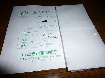 P1260452.jpg