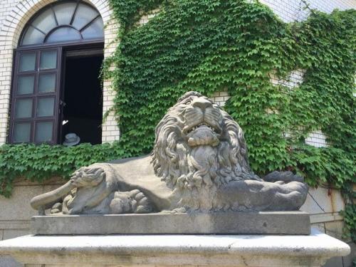 2016-06-18ライオン像