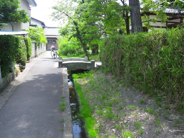 光蓮寺の参道橋 (7)