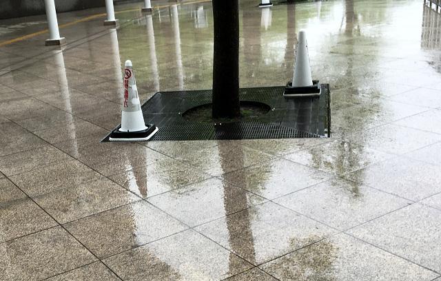 2016年9月20日の雨の戸外