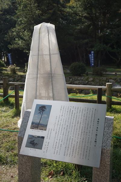 1105出雲大社4