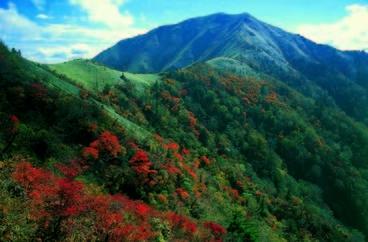 剣山 風景