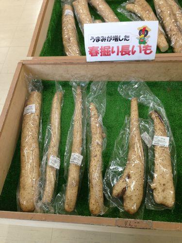 002あじ・彩・感山菜