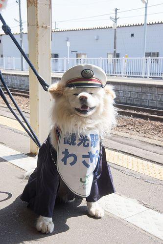 002わさお駅長