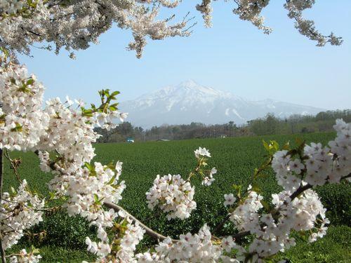 001春の風景