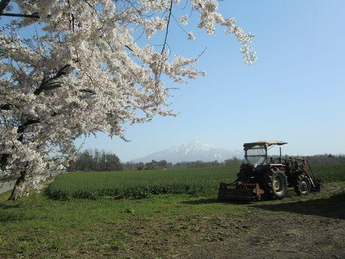 002春の風景