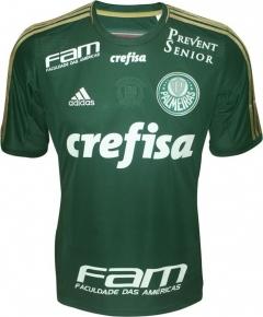 Palmeiras-2014-15-uniform-home-adidas-01.jpg