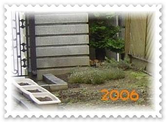 DSC03288 2006a