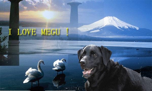 LOVE MEGU_01