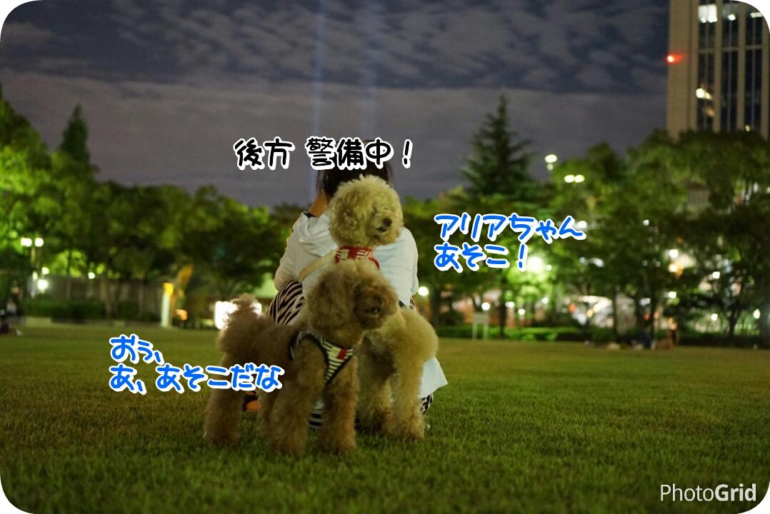 20160916124943d8c.jpg