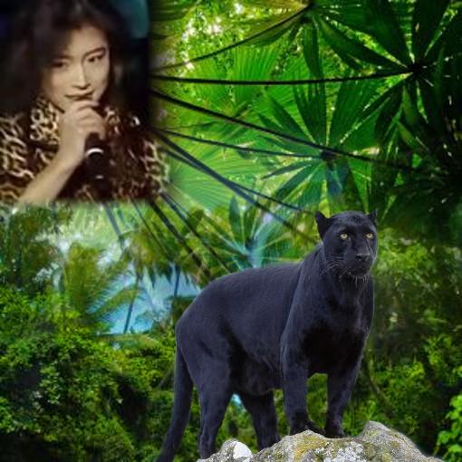 NIGHTMARE-悪夢- nakamoriakina-ジャングル-豹