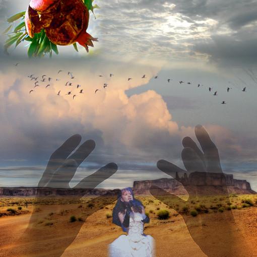 陽が射す空に鳥の群れ