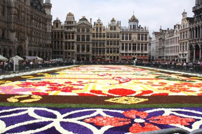 carpet2016-5.jpg