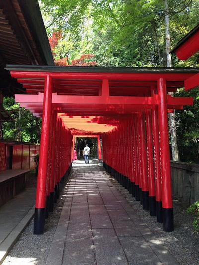 20160425img3195 torii