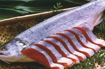 鮭が白身魚