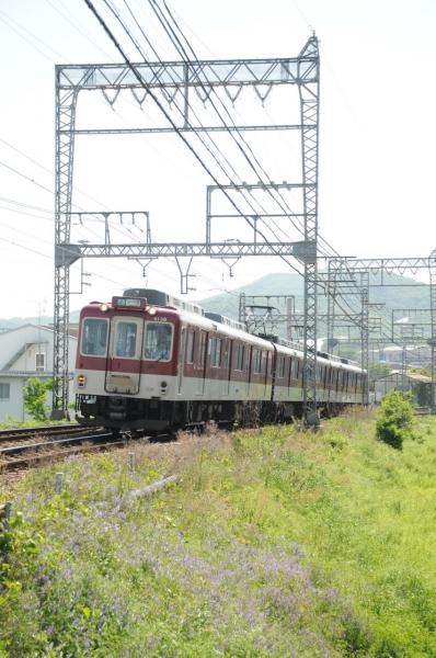 DSC_6614.jpg