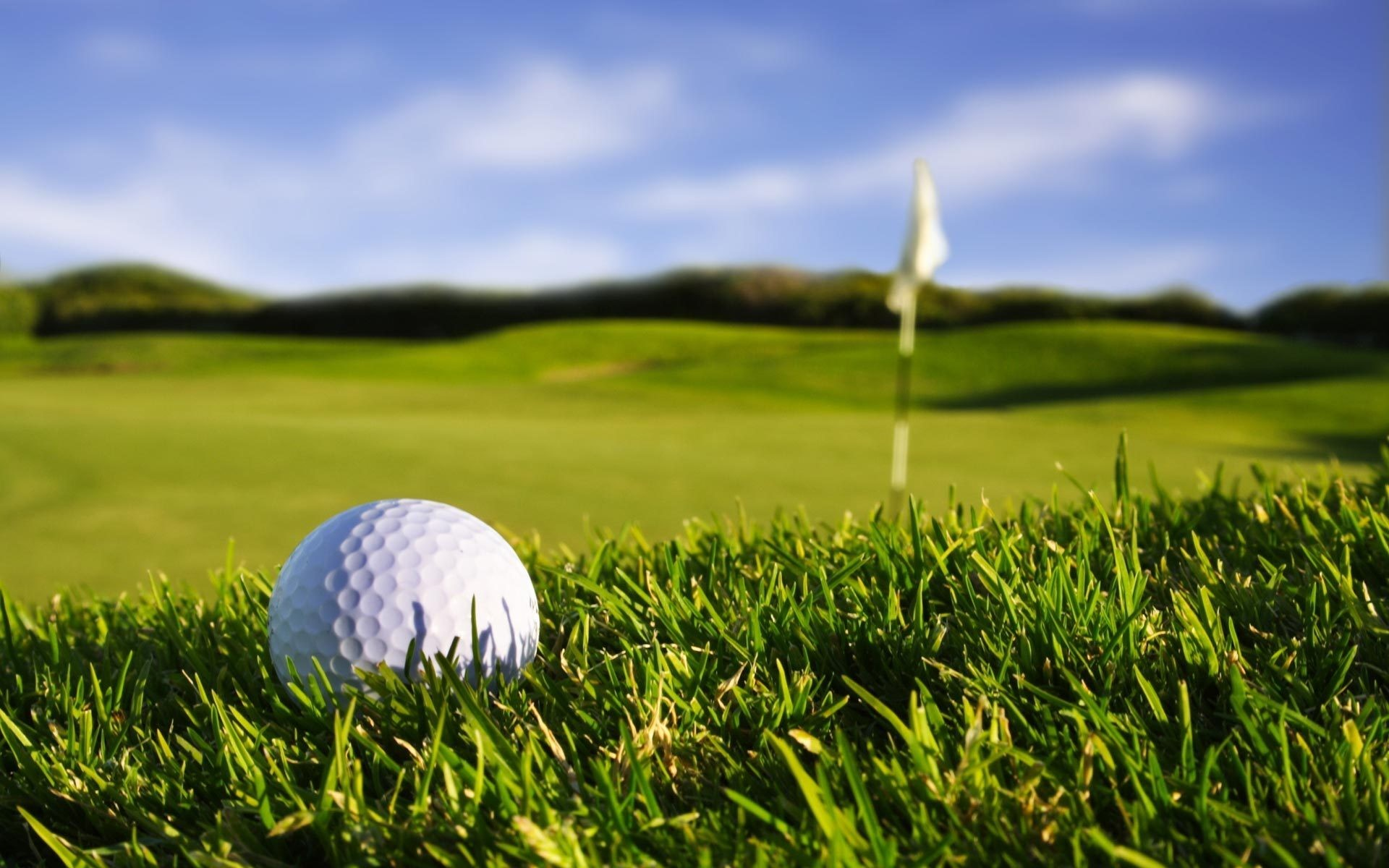 golfkaitori.jpg