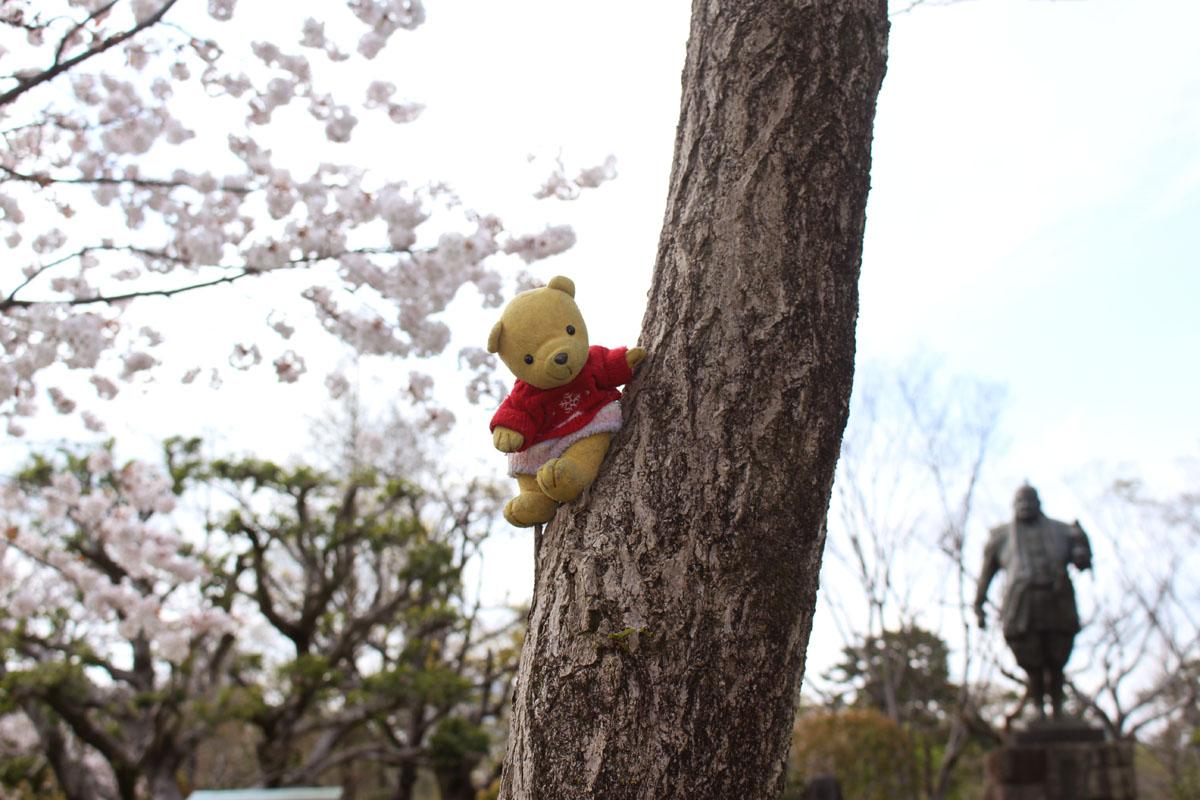 家康公と桜を背景に・駿府城公園で 160405