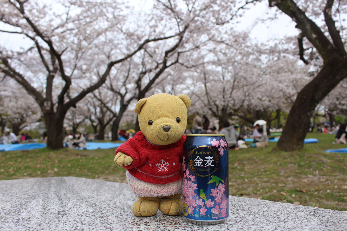 桜をバックに金麦と・駿府城公園で 160406
