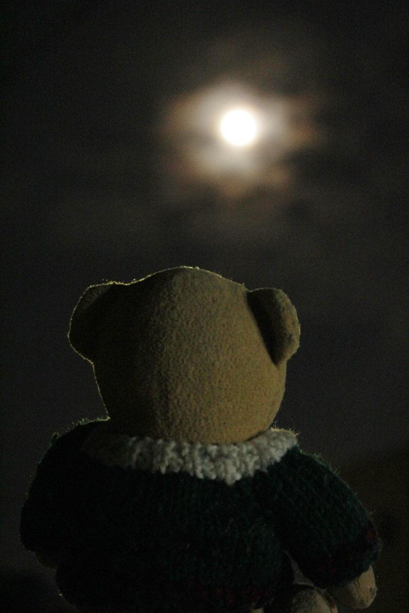 中秋の名月を観る 160915