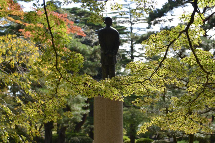 紅葉近し 弥彦公園-3