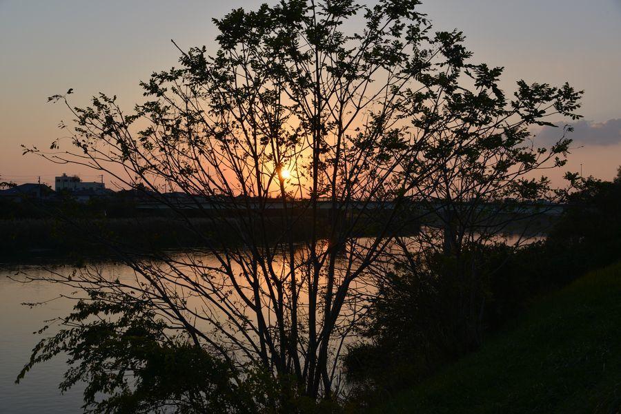 河の夕日-1