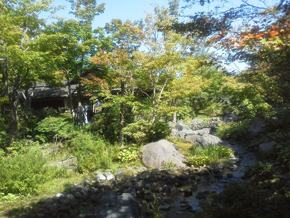 F1000572昭和記念公園10月2日日本庭園