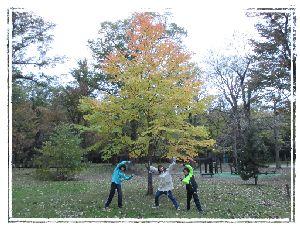 グラデーションの木