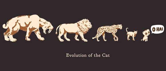 ネコの進化