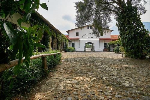 アゾテア農園