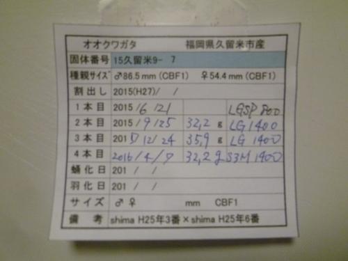 s15-9-7カード